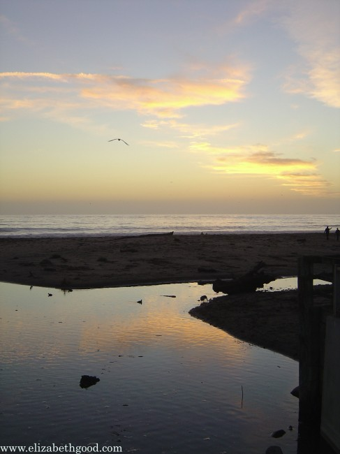 Beach, Aptos, California photo by Elizabeth Good
