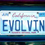 Evolvin'