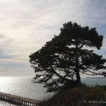 Seacliff Beach, Aptos California