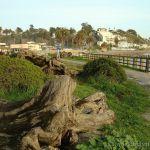 Rio del Mar Beach, Aptos California