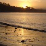 Sunset, Soquel California
