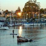 Stand-Up Paddler, Santa Cruz Harbor