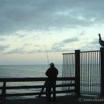 Pelican and Fisherman