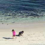 Children, Lover's Point, Pacific Grove California