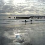 Boys, Seacliff Beach, Aptos California
