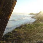Web Over Pleasure Point Beach, Santa Cruz