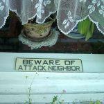 Beware Of Attack Neighbor