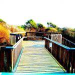 Colorized Rendering: Beach, Stairs, Aptos California