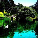 Colorized Rendering; Stowe Lake Golden Gate Park San Francisco