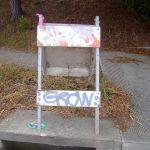 """""""Grow"""" Graffiti"""