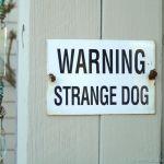 Sign Strange Dog